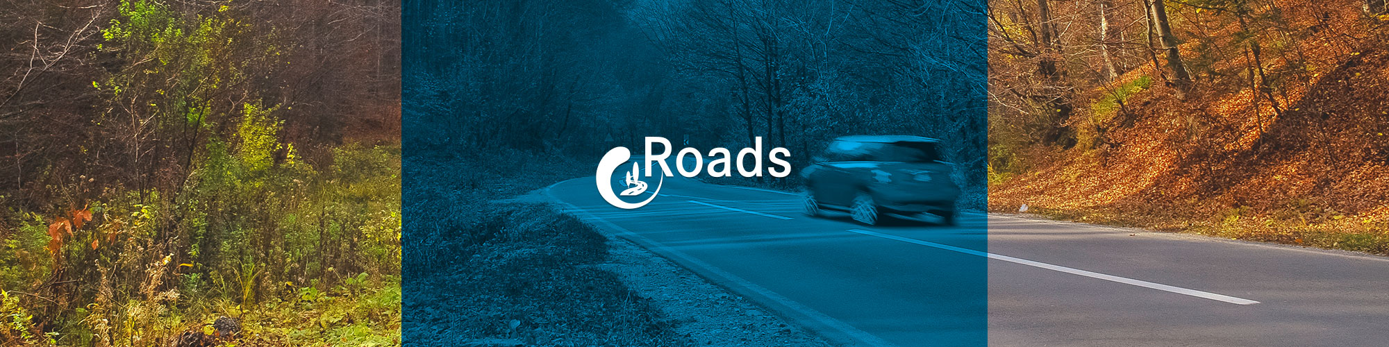 Ingeea Roads