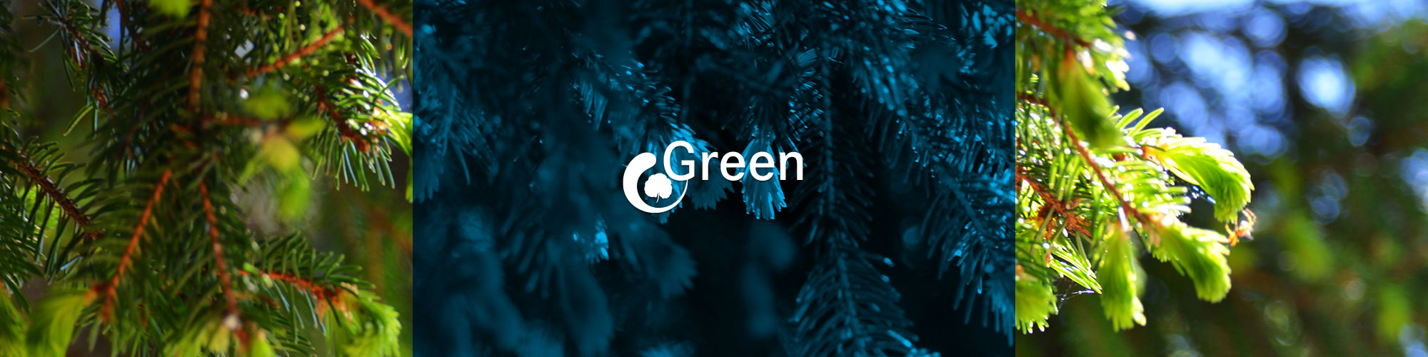 Ingeea Green